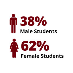 Infographic: 38% Male Students, 62% Female Students
