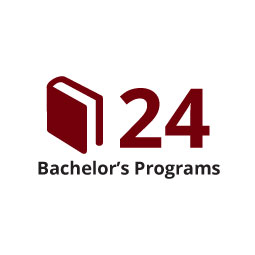 Infographic: 24 Bachelor's Programs