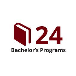 Infographic: 24 Bachelor's Programs