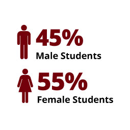 Infographic: 45% Male Students, 55% Female Students