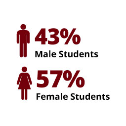 Infographic: 43% Male Students, 57% Female Students