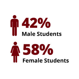 Infographic: 42% Male Students, 58% Female Students