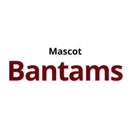 Infographic: Mascot Bantams