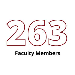 Infographic: 263 Faculty Members